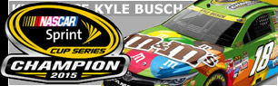 2015 Kyle Busch #18 M&M's Crispy - NASCAR Sprint Cup Champion Diecast, by Action